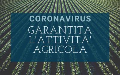 CORONAVIRUS – RESTA GARANTITA L'ATTIVITA' AGRICOLA