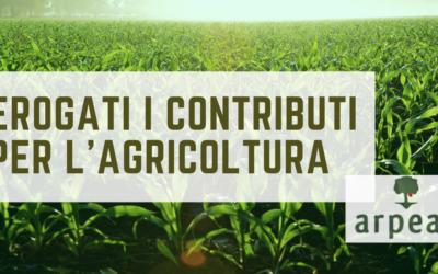 ARPEA: 12,7 MILIONI DI EURO PER OLTRE 5MILA AZIENDE AGRICOLE PIEMONTESI